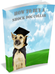 How To Buy A Shock Collar