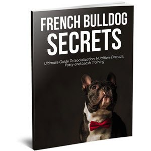 French Bulldog Secrets