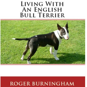 The Complete Guide to Bull Terriers